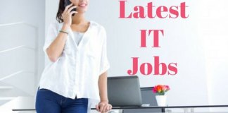 Latest-IT-Jobs-3