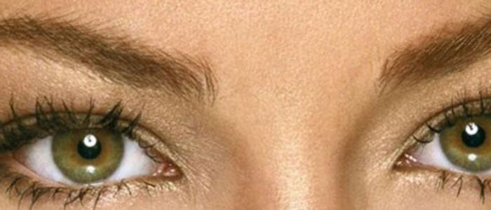 Why do we have eyebrows?