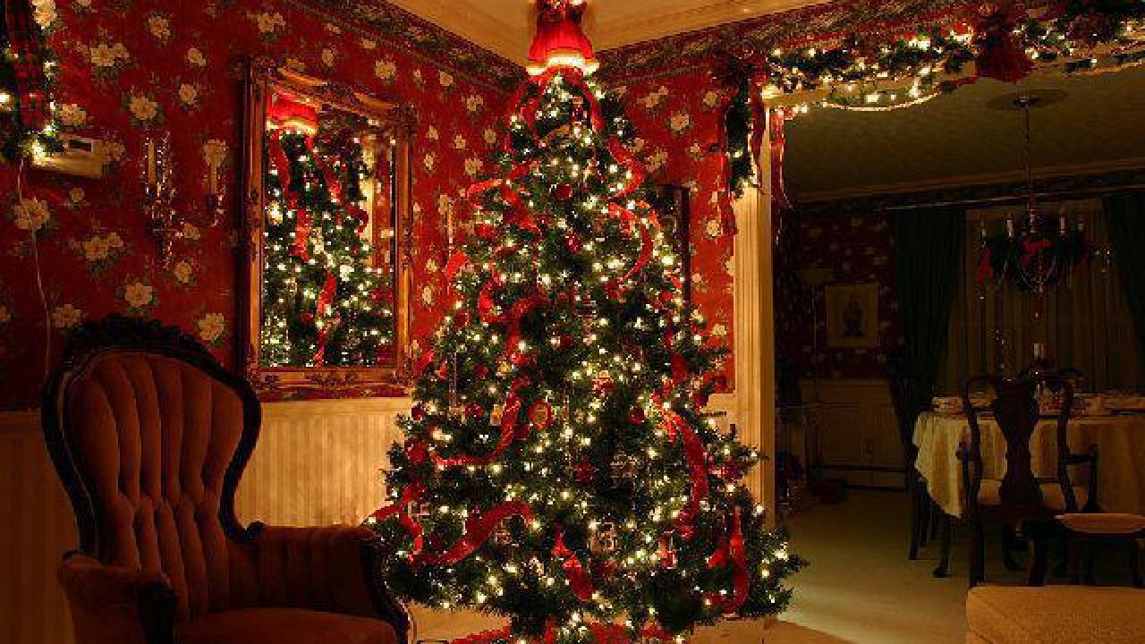Miscellaneous Christmas Trivia.40 Fun Facts About The Christmas Tree List Useless