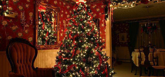 40 fun facts about the Christmas tree! (List)