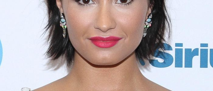 30 interesting facts about Demi Lovato! (List)