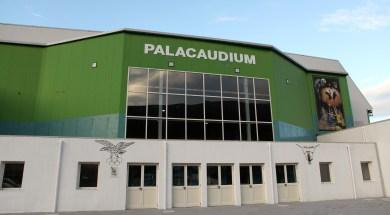 palacaudium 1