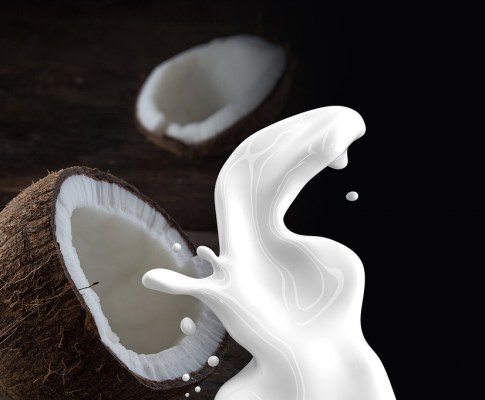 16 Amazing Coconut Milk Benefits for Healthy Life