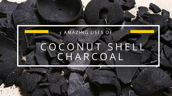 5 Amazing Uses of Coconut Shell Charcoal
