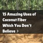 Coconut Fibre