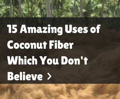 15 Amazing Uses of Coconut Fibre Which You Don't Believe
