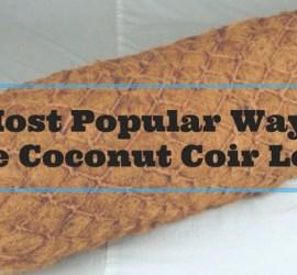 Coconut Coir Logs