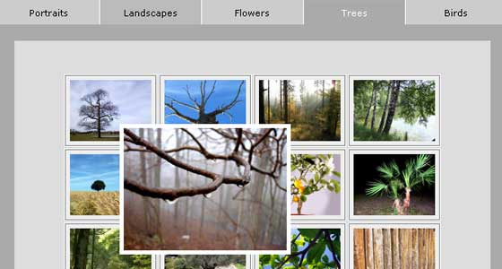 Cross Browser Multi-Page Photograph Gallery