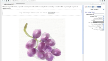 3 Chrome Extensions For Adding Watermark in Images