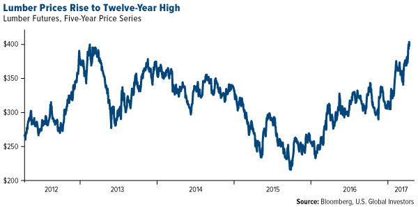 lumber prices rise to five year high