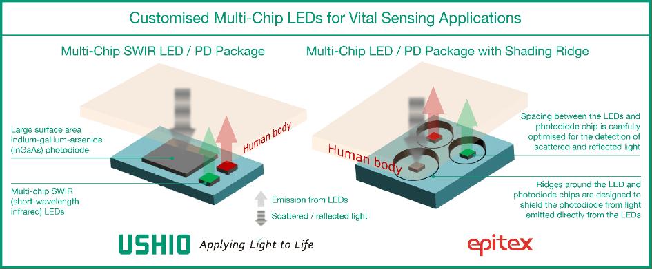Customized Multi-Chip LEDs