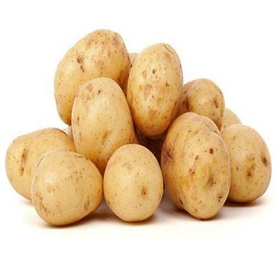 картофель купить
