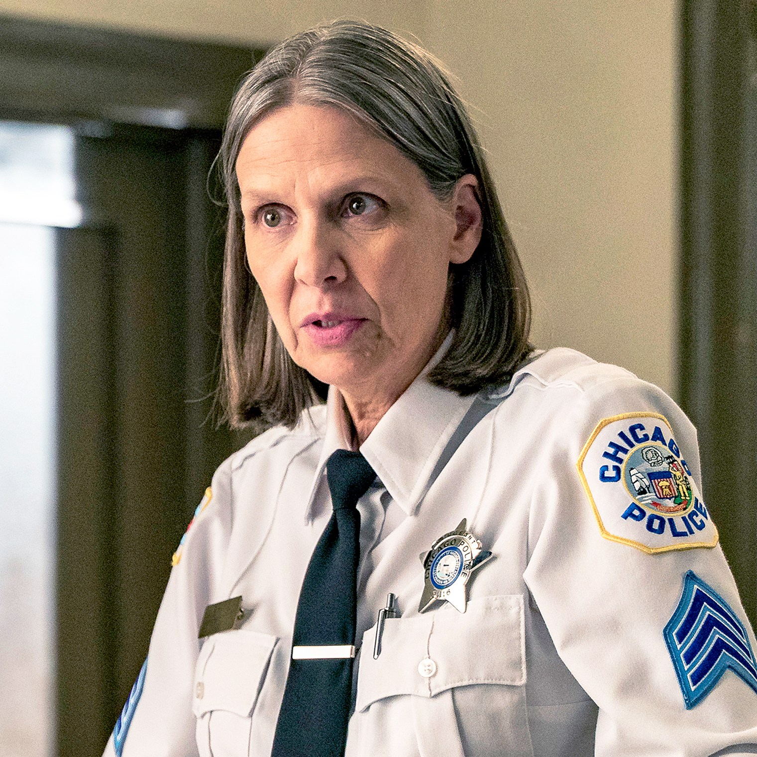 Amy Morton as Trudy Platt on Chicago P.D.