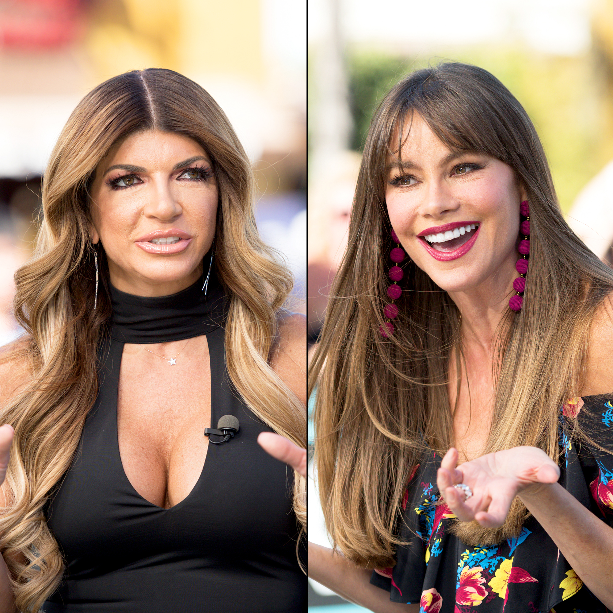 Teresa Giudice Says Sofia Vergara Should Be Nice Because She's an Immigrant