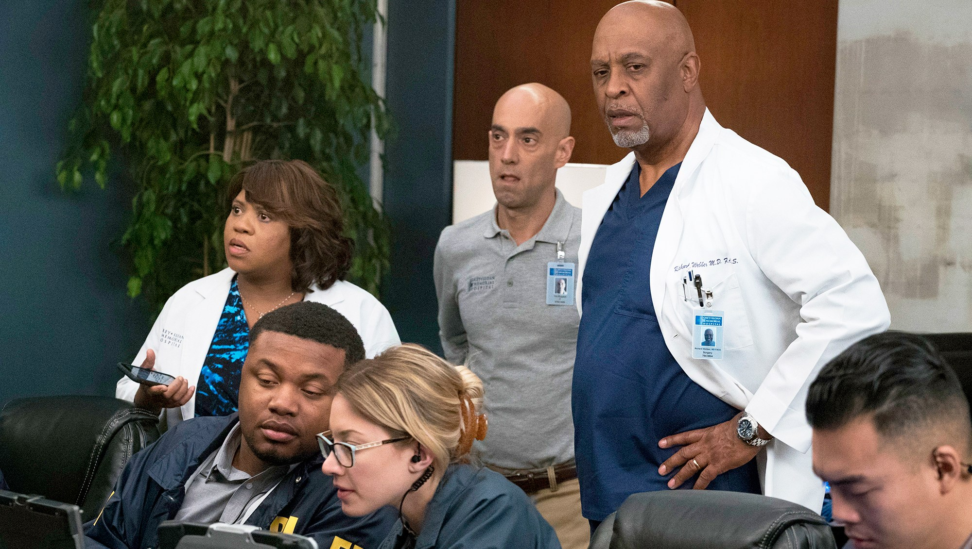 Chandra Wilson and James Pickens Jr. on 'Grey's Anatomy'