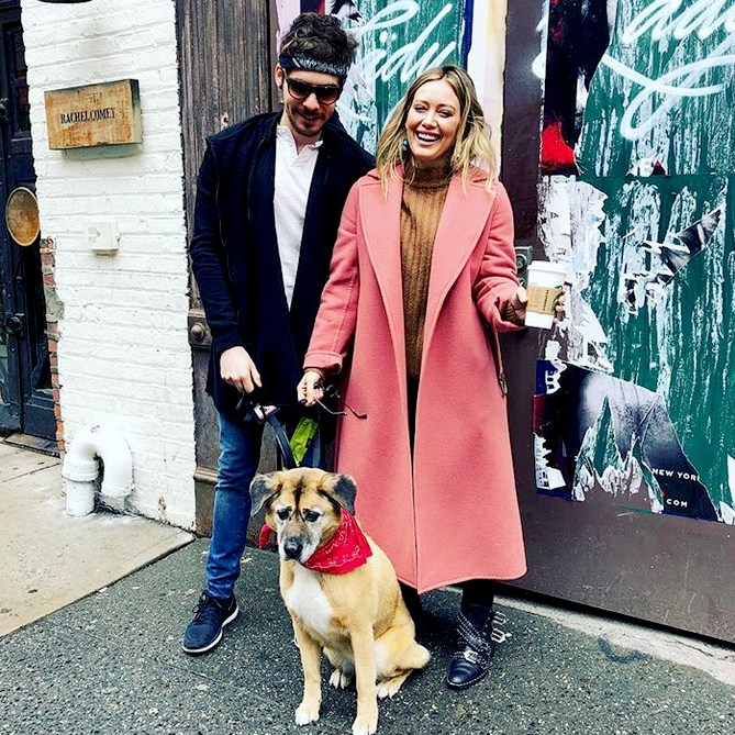 matthew-koma-hilary-duff-adopt-dog