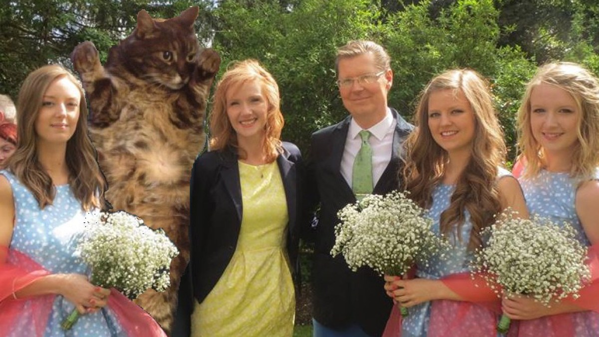 Womans Ex Boyfriend Replaced With Cat In Hilarious Pics