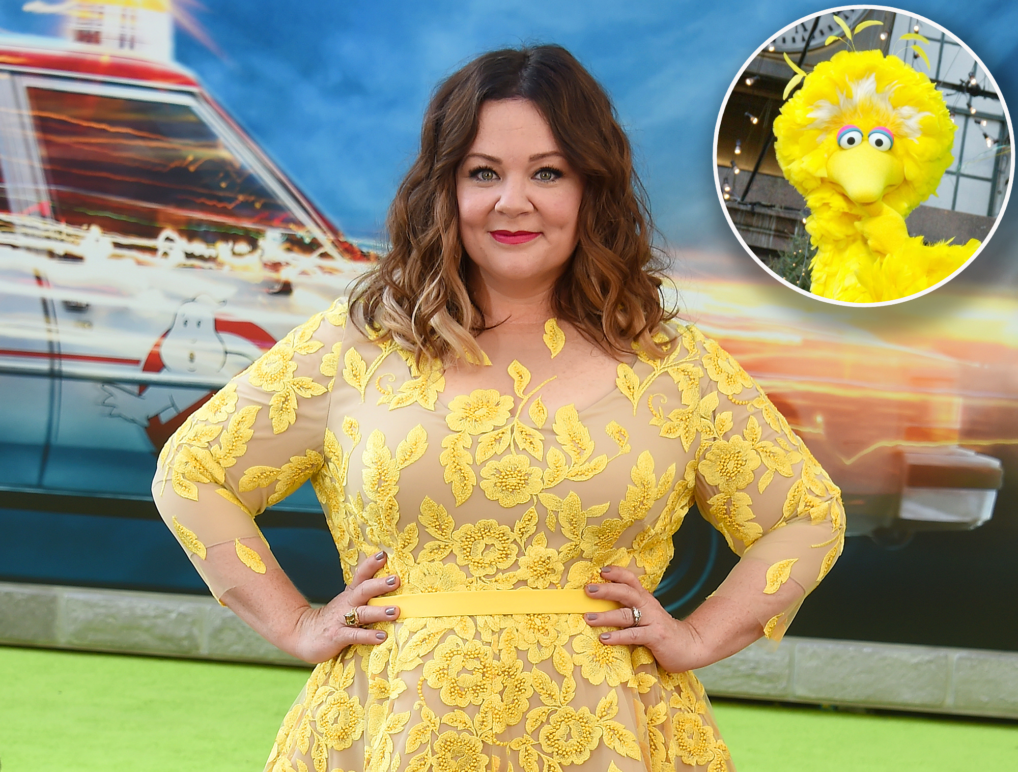 'Sesame Street' sues makers of Melissa McCarthy puppet movie