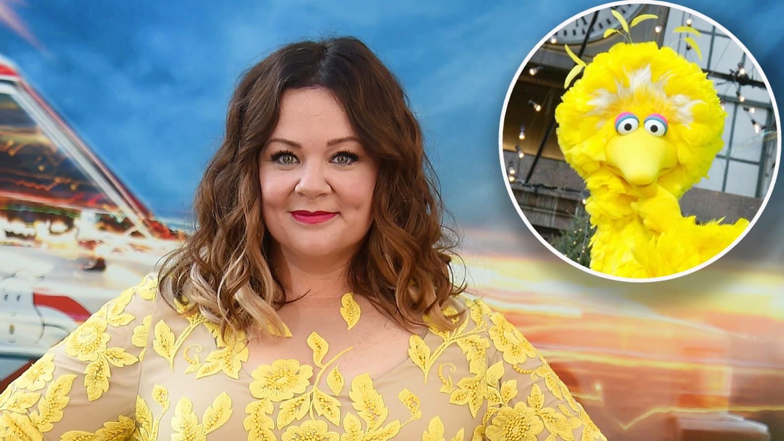 Anti Vaxxers Convinced Sesame Street >> Sesame Street Creators Sue Producers Of Melissa Mccarthy Puppet Film