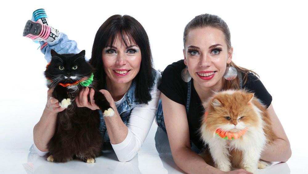 Image result for SAVITSKY CATS