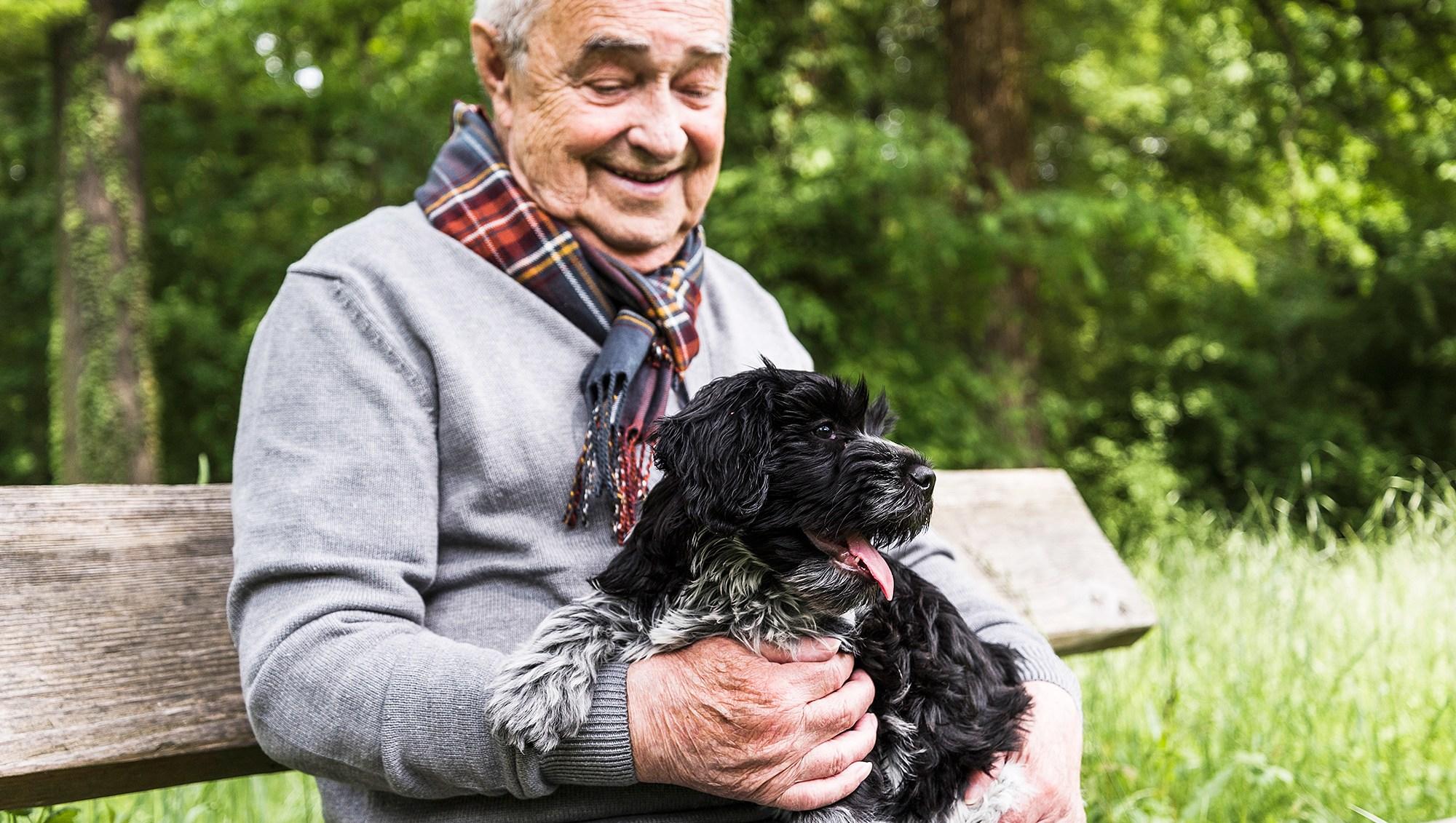 Meals On Wheels Pets Elderly Initiative