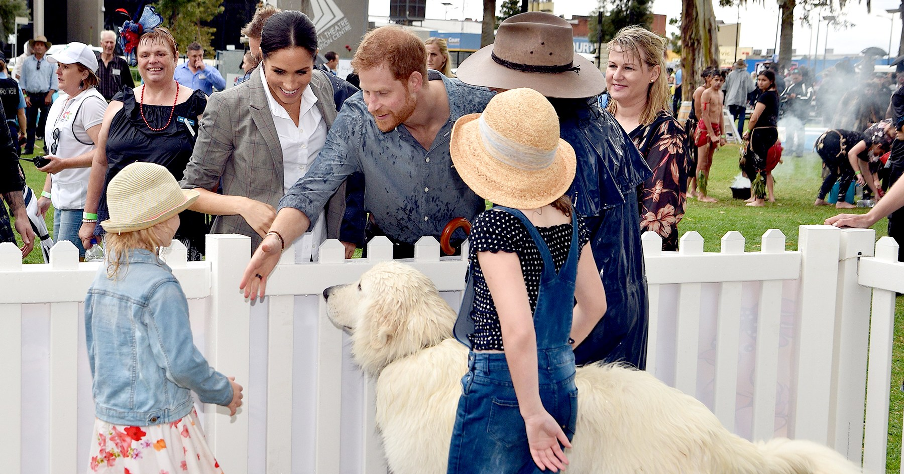 Prince Harry Made Us Melt While Playing With Dogs in Australia