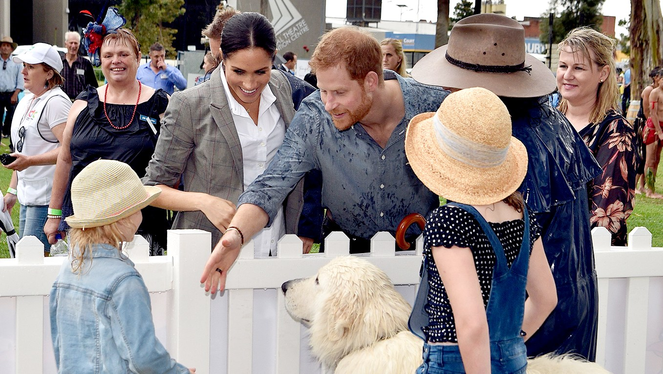 prince-harry-meghan-dog