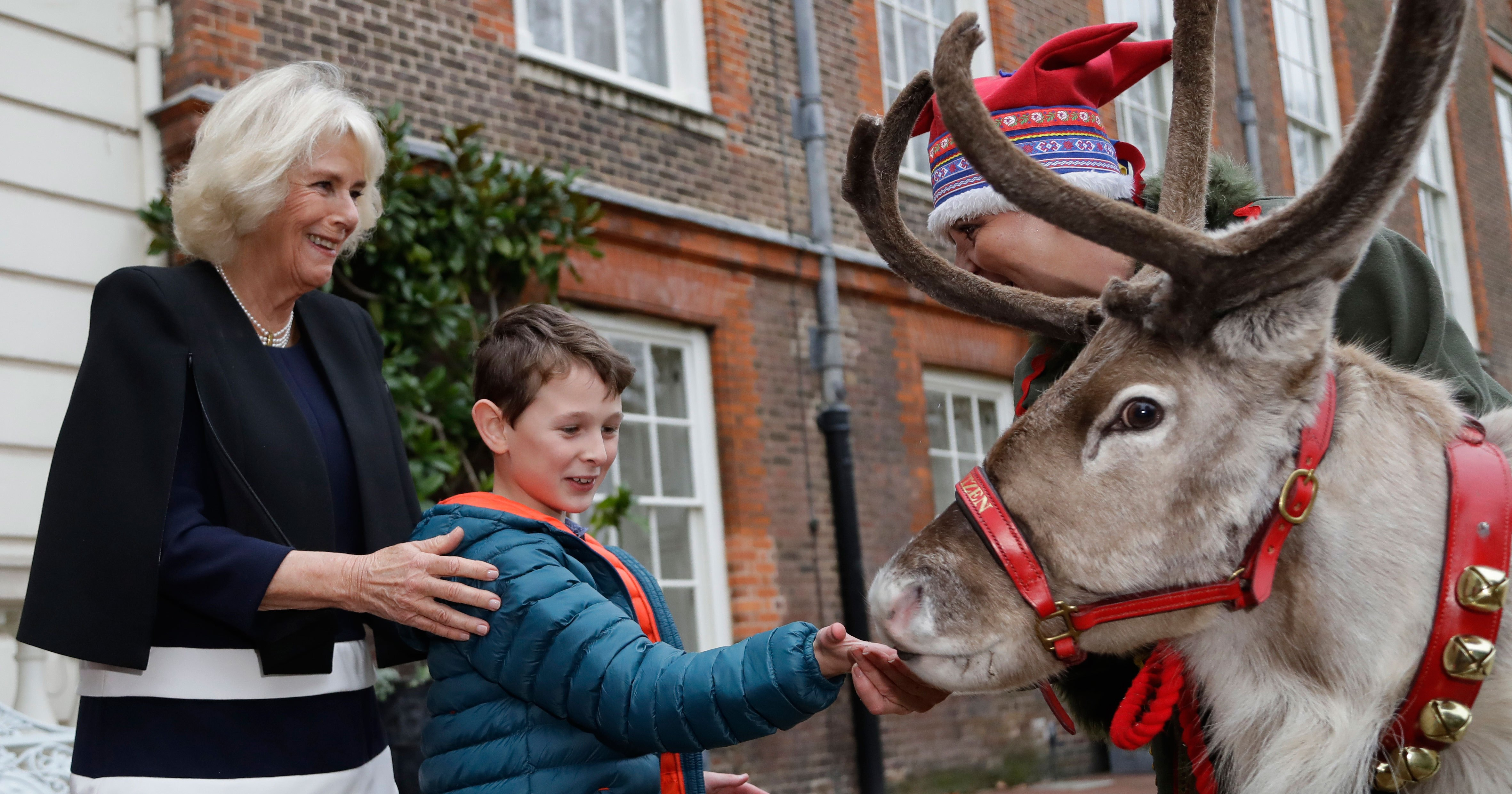 Camilla Hosts Christmas Party for Sick Kids, Surprises Them With Reindeer