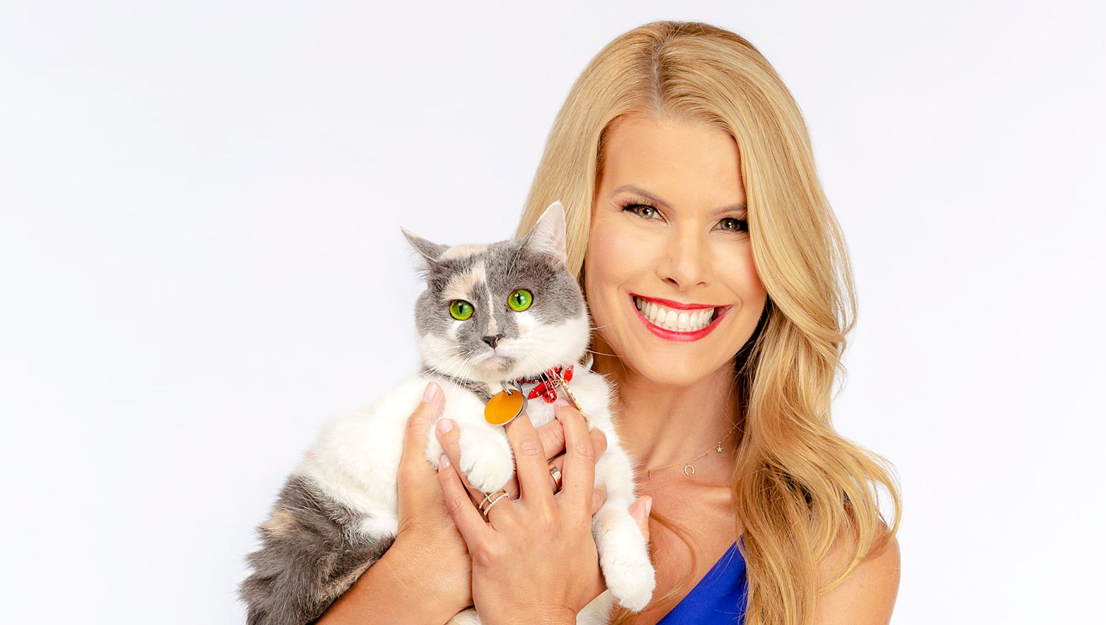 Beth Stern Kitten Bowl Secrets