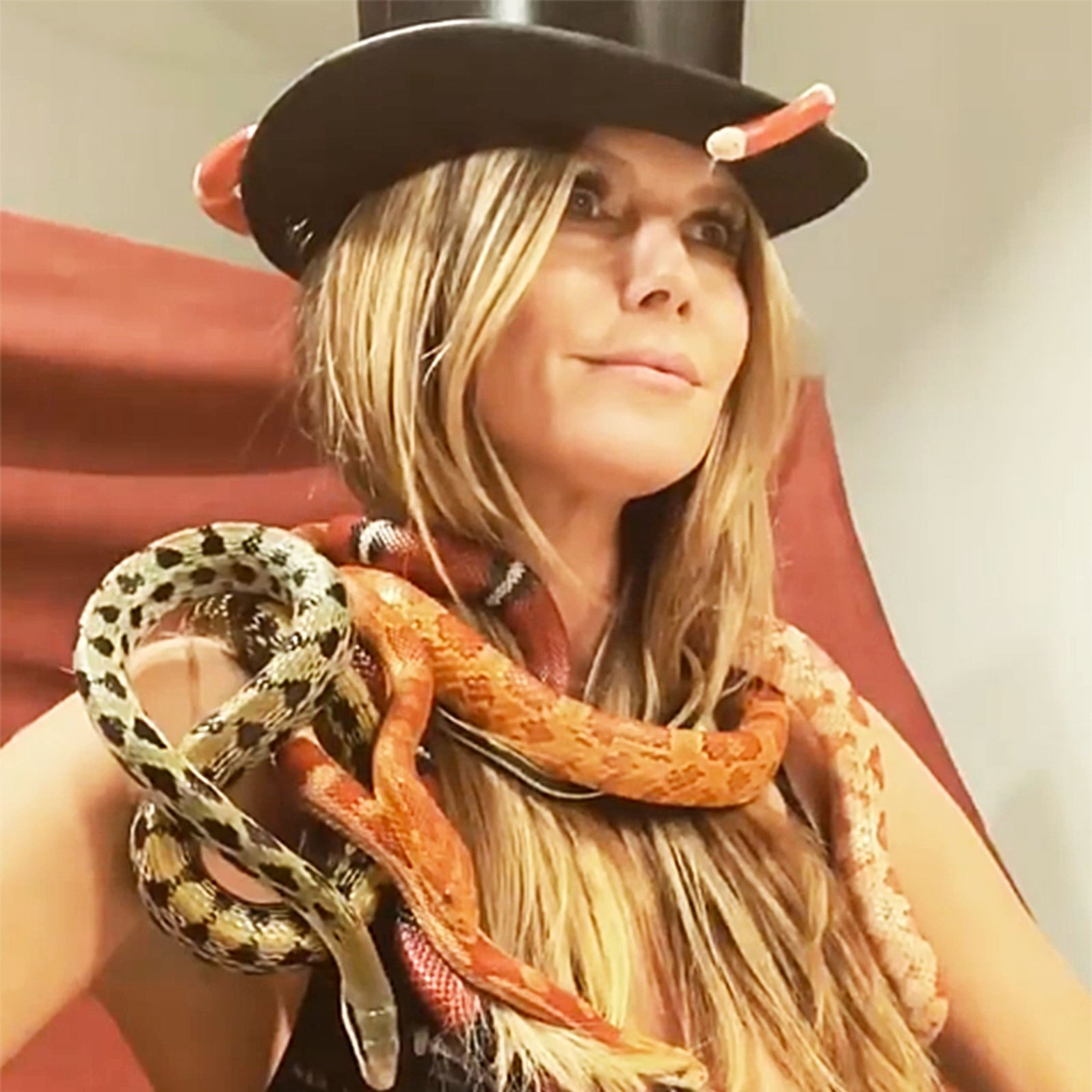 Heidi Klum Poses In Bra While Covered in Snakes