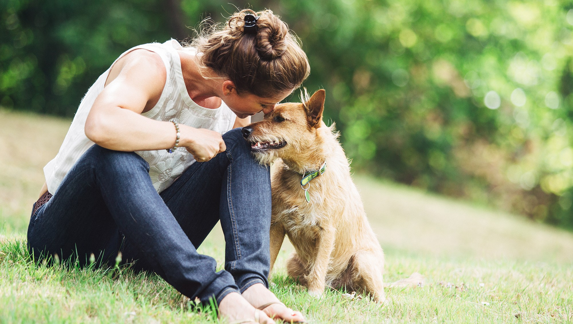 5 Universal Signs Your Dog and Cat Love You