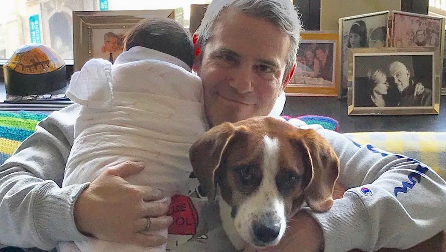 andy-cohen-baby-dog