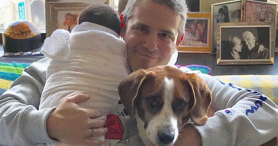 Andy Cohen Dad-Shamed for Letting Dog Sniff Newborn Baby's Face