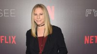 Barbara Streisand Comments on Michael Jackson Upset Fans