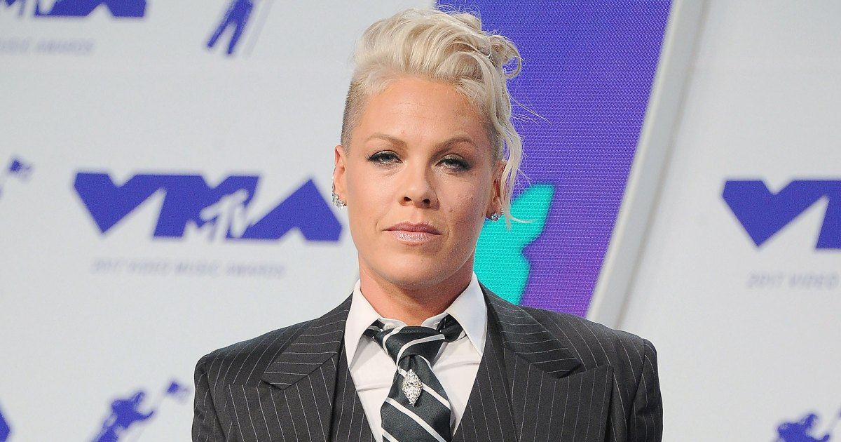 Pink Claps Black at Fan Who Criticized Her Family Dinner