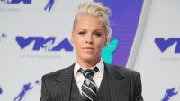 Pink Claps Back at Fan Who Criticized Her Family Dinner Photo
