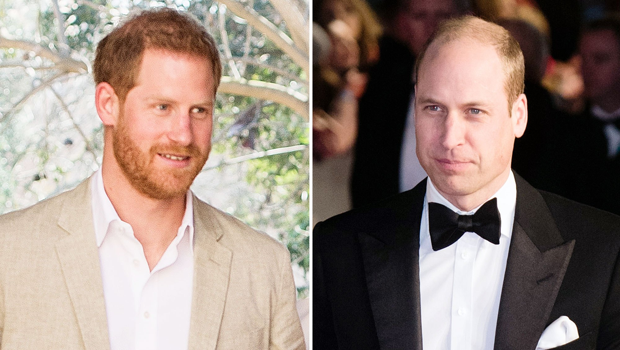 Prince Harry Prince William Split Royal Households