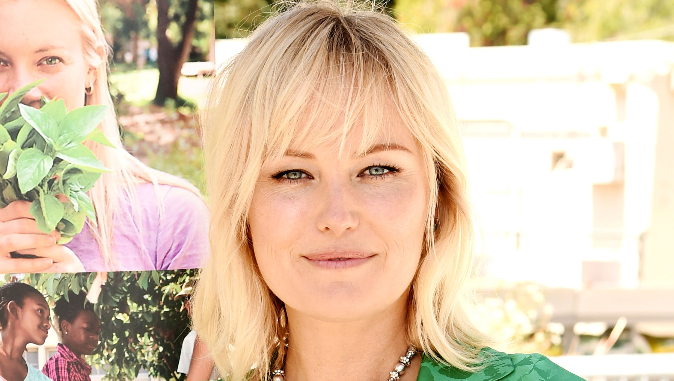 malin akerman 27 dresses sequel