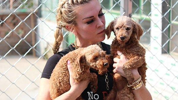 Tinsley Mortimer Dog Rescue