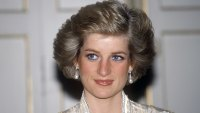 Diana: Case Solved: The Definitive Account and Evidence That Proves What Really Happened