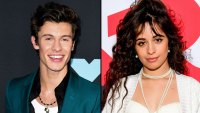 American Music Awards 2019: Shawn Mendes and Camila Cabello to Perform 'Señorita' Together, Halsey Added to Lineup