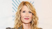 Laura Dern On Instagram Filters and Aging