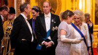 Prince William Diplomatic Reception
