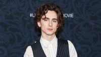 Timothee Chalamet Pinstripes December 7, 2019