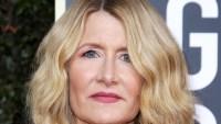 Golden Globes 2020 Makeup - Laura Dern