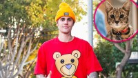 Sandra Lee Finds Justin Bieber's Missing Cat Sushi 3 Weeks After It's Disappearance