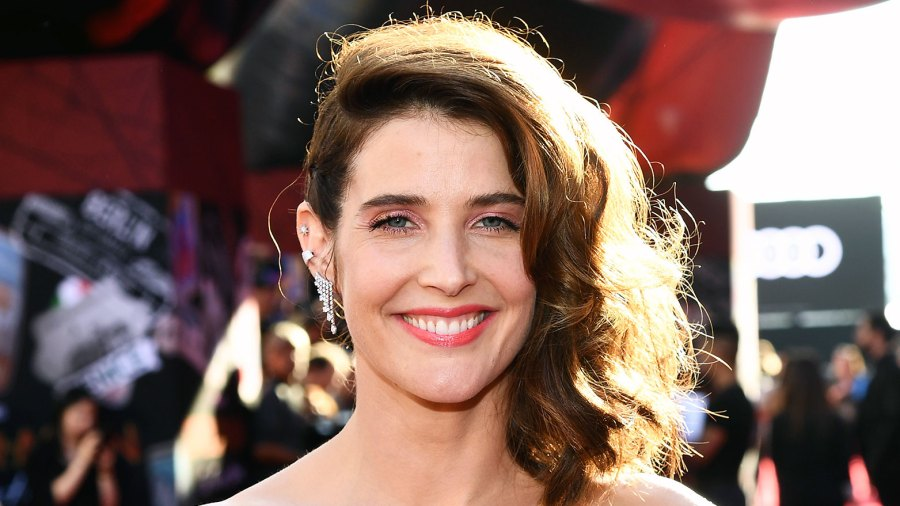 Cobie Smulders Sings Lets Go to the Mall From How I Met Your Mother