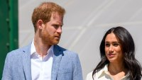 Prince Harry, Meghan Markle Call Police After Drones Fly Over LA Home