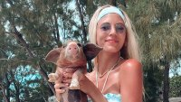 Devon Windsor Holds a Pig Named Wilber in a Tie-Dye Bikini