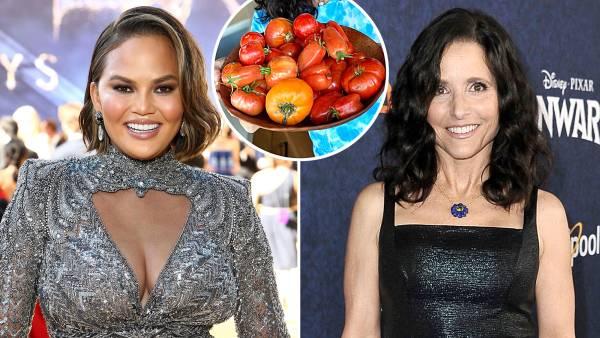 Chrissy Teigen Julia Louis-Dreyfus Stars Show Off Their Summer Eats